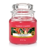 nen-hu-Tropical-Jungle-yankee-candle