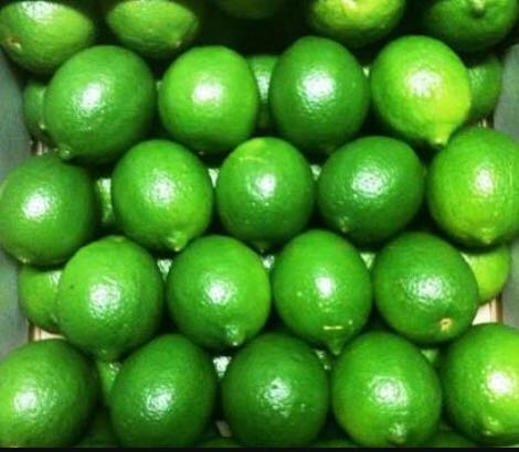 Seedless lime  and green lemon