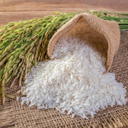 Gạo 64 Chợ Đào-danh sách các loại gạo ngon rẻ nhất Việt Nam