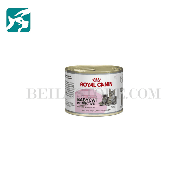 Pate Royal Canin Baby Cat and Mother 195Gam (Dạng lon)