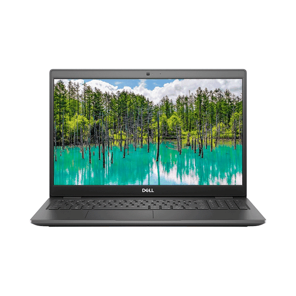Laptop Dell Latitude 3510 (70233210) (i3 10110U /4GB RAM/1TB HDD/15.6 inch/Xám)
