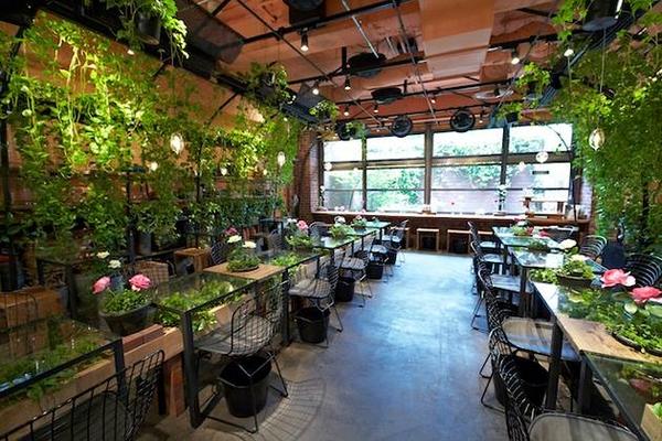 View đẹp cùng không gian thoáng mát là điểm nhấn nổi bật cho quán cà phê