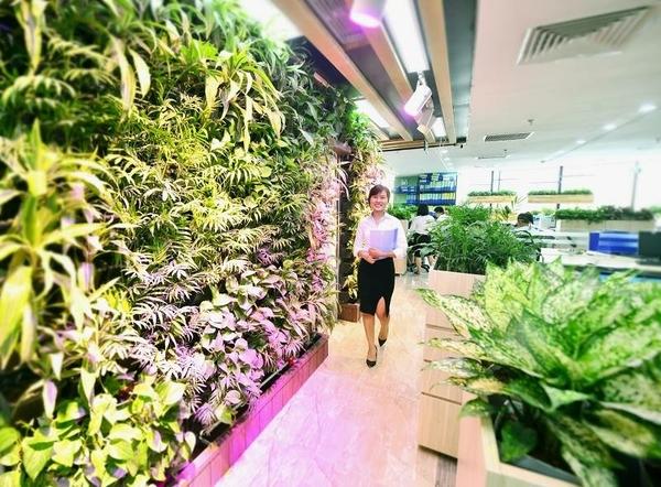 cây xanh giúp tâm lí nhân viên tích cực hơn