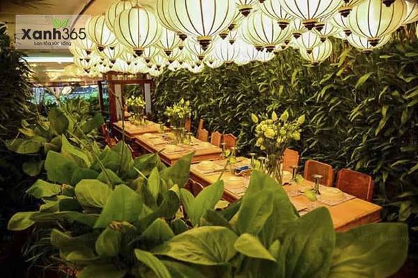 Trang trí bằng cây xanh tạo không gian ăn uống thoải mái hơn