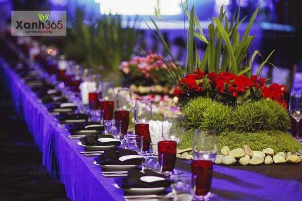 Trang trí tiệc cưới với cây xanh và hoa