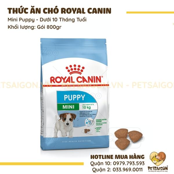 Royal Canin Mini Puppy Cho Chó Dưới 10 Tháng