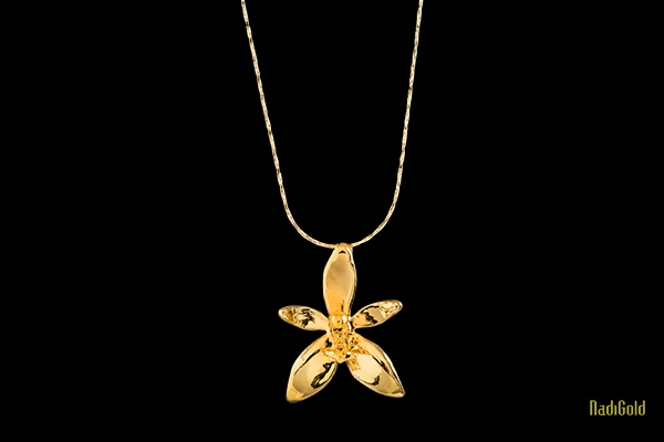 hoa lan hồ điệp sừng nai mạ vàng