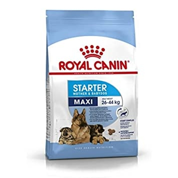 ROYAL CANIN - Maxi Starter Mother&Baby Dog 4kg
