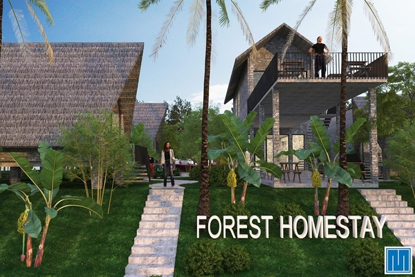 Forest Homestay Phong Nha