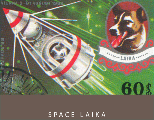 Space Laika/06 - Colorverse