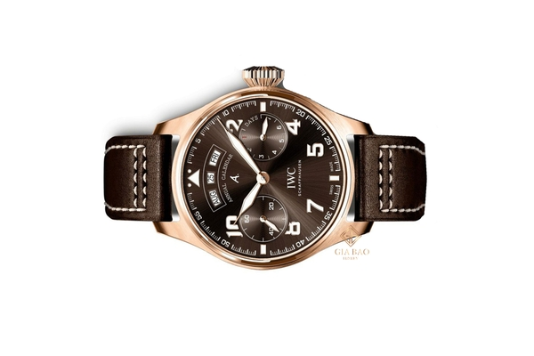 Đồng Hồ IWC Pilot's Watches IW502706