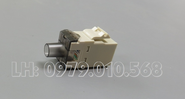 Hạt mạng AMP Category 5 Modular Jack RJ45