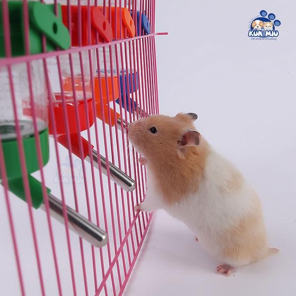 Bình nước treo lồng cho hamster 80ml