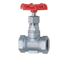 KITZ Stainless Steel Globe Valve, Threaded Ends: UCL