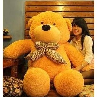 teddy-boyds-1m5-chinh-hang
