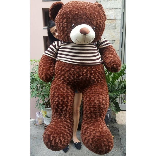 gau-teddy-1m8-long-xoan-day-dep