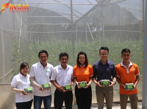 Turn-key project for hydroponic vegetable cultivation in Dong Nai