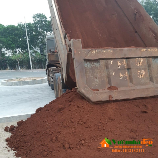 Công ty cung cấp đất trồng cây