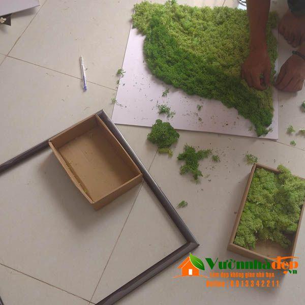 Hướng dẫn thi công tường rêu tuần lộc