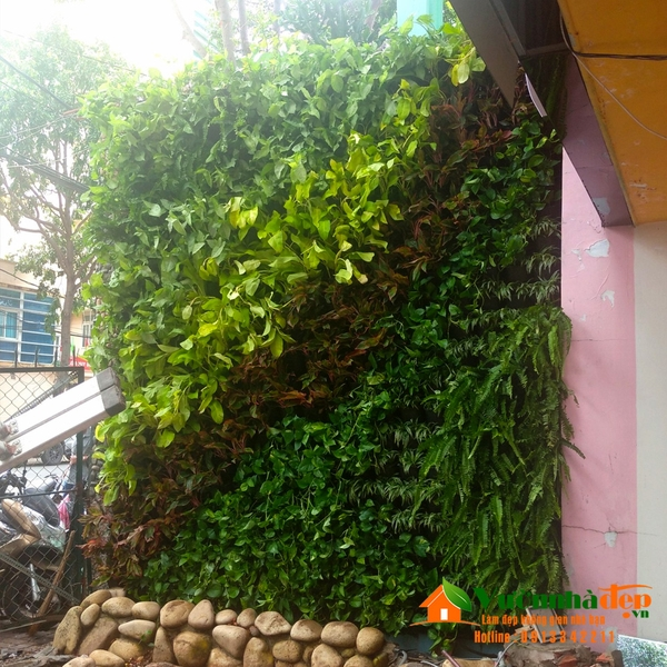 Thi-cong-tuong-cay-tai-vung-tau