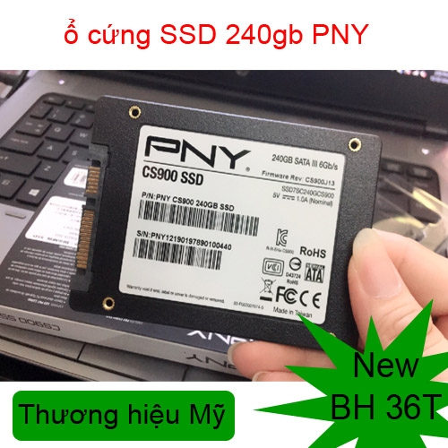 ổ cứng ssd 240gb PNY