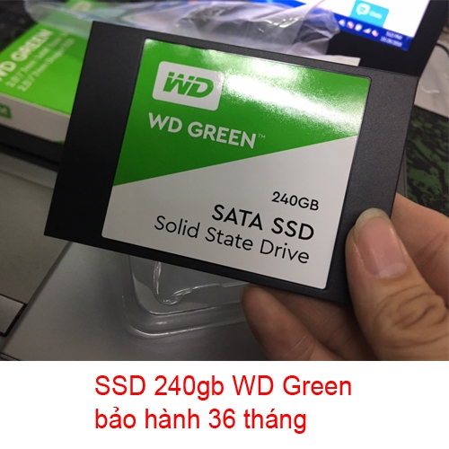 ổ cứng SSD 240gb WD