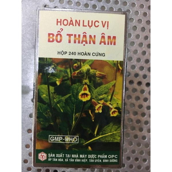 hoan-luc-vi-bo-than-am