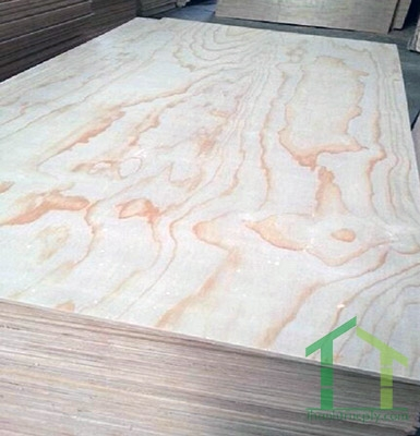 Pine Plywood - Commercial Grade