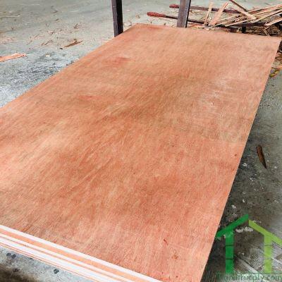 Yellow Birch - Furniture Plywood