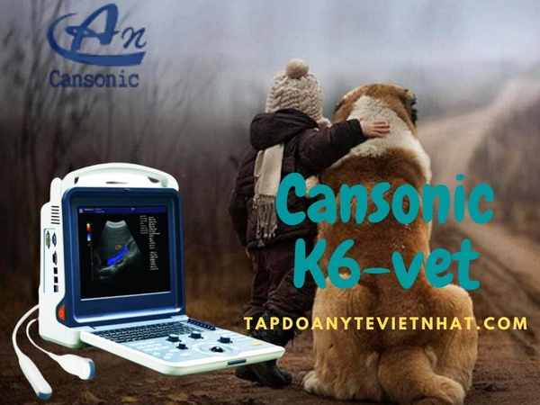may-sieu-am-thu-y-cansonic-k6vet