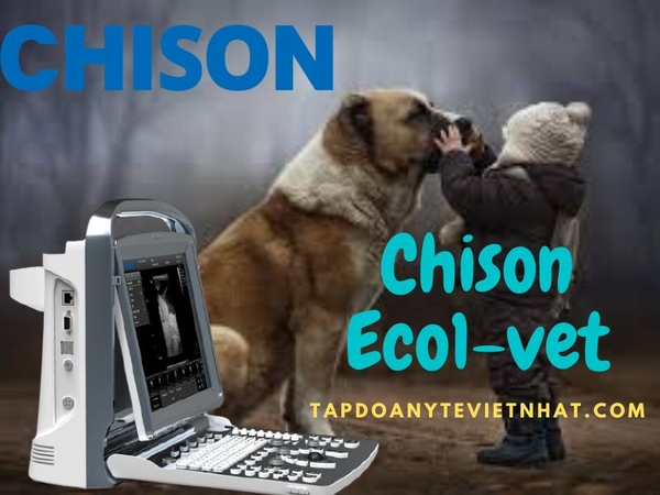 may-sieu-am-thu-y-chison-eco1-vet
