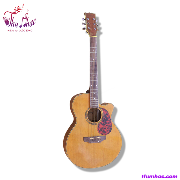 guitar-acoustic-dojing-sp000255