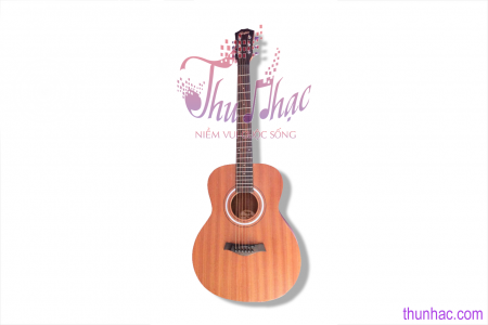 guitar-acoustic-taylor-bt2-gtn0126