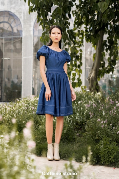 Julia denim dress