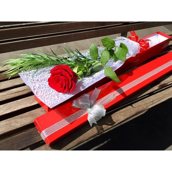 vd-single-red-rose-box