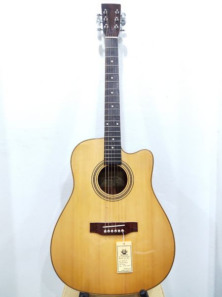 dan-guitar-acoustic-ag-330a