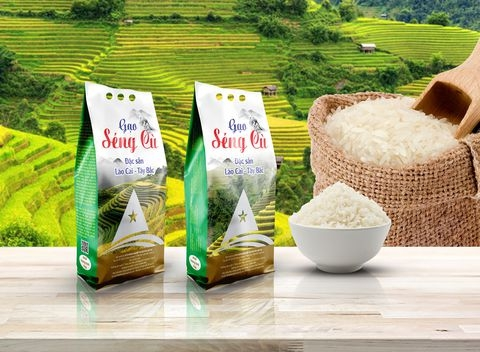 pp-packaging-for-rice