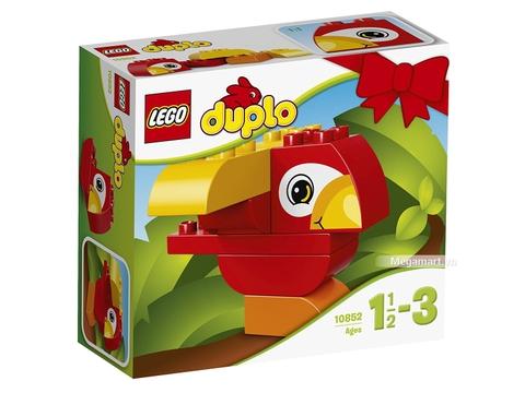 Hình ảnh vỏ hộp bộ Lego Duplo 10852 - Chú vẹt đầu tiên