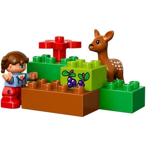 Các chi tiết Lego Duplo 10584 - Công Viên Hoang Dã mảnh ghép kích thước lớn