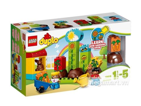 Hình ảnh vỏ hộp bộ Lego Duplo 10819 - Khu Vườn Đầu Tiên Của Bé