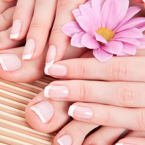 the spa nail salon orlando image