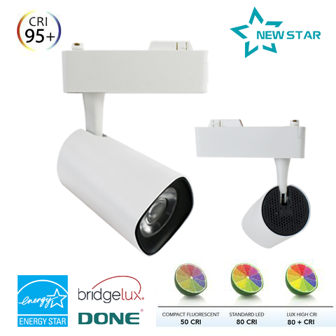 Đèn Led Rọi Ray NewStar NS-RR01