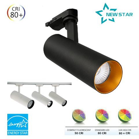 Đèn Led Rọi Ray NewStar NS-RR06