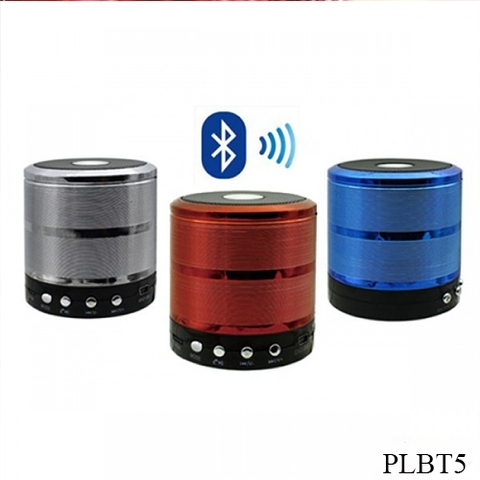 Loa Bluetooth WS-887