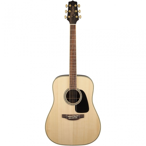 Guitar Takamine GD51
