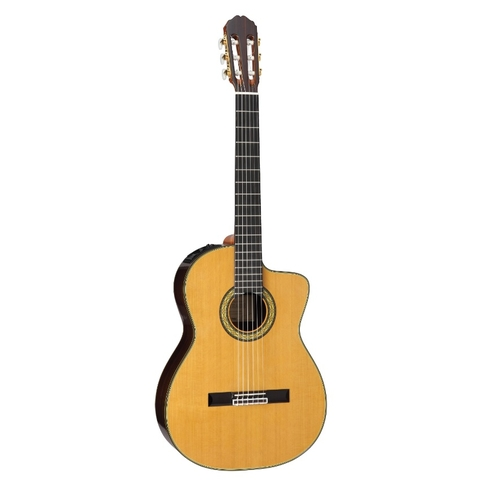 Guitar Takamine TH5C