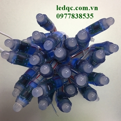 Led đúc F8 đế 12 full 9803