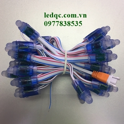 Led đúc F8 đế 12 full 1903