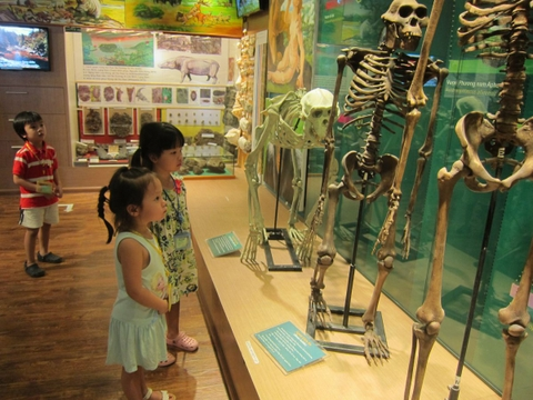 A VISIT TO THE NATIONAL MUSEUM OF NATURE