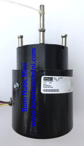 Motor Brushless 24V FASCO